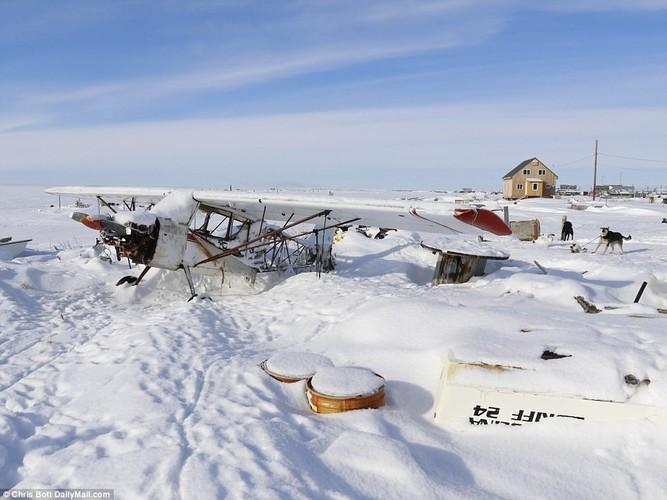 Cuoc song trong ngoi lang sap bi nuoc bien nhan chim o Alaska-Hinh-3