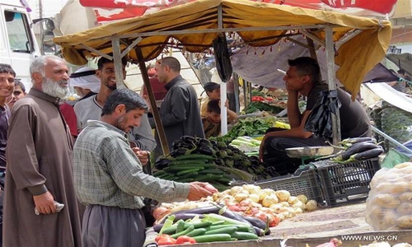 Cuoc song tai nhung khu vuc moi giai phong o Tay Mosul-Hinh-13