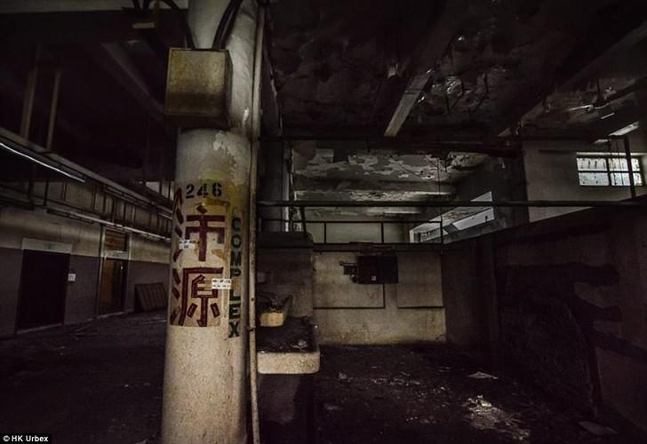 "Hai hung ben trong ""cho ma"" bo hoang giua long Hong Kong-Hinh-13"