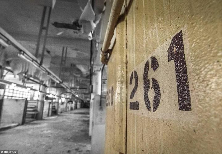 "Hai hung ben trong ""cho ma"" bo hoang giua long Hong Kong-Hinh-4"