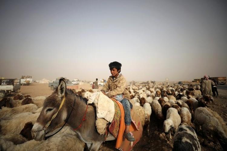 Cuoc song thuong dan Syria chay khoi Raqqa-Hinh-10