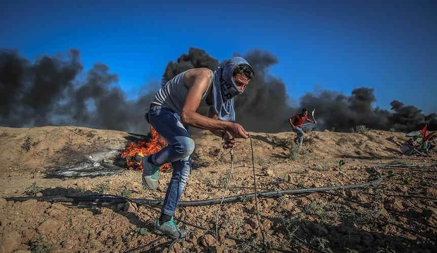 Anh: Bieu tinh du doi o Dai Gaza vi thieu dien-Hinh-7