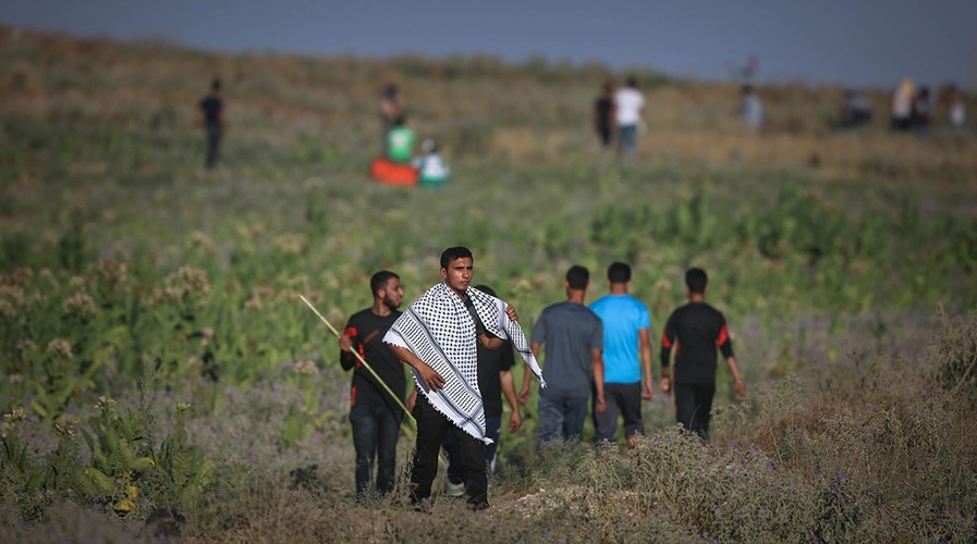 Anh: Bieu tinh du doi o Dai Gaza vi thieu dien