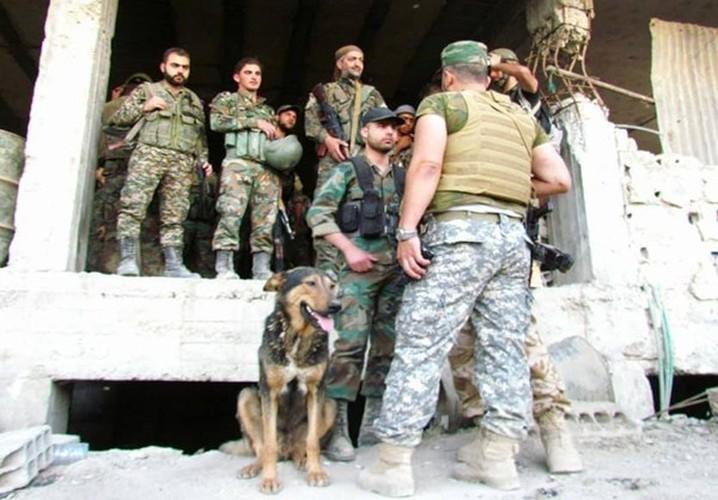 Anh: Quan doi Syria giai phong loat khu vuc o Damascus-Hinh-4