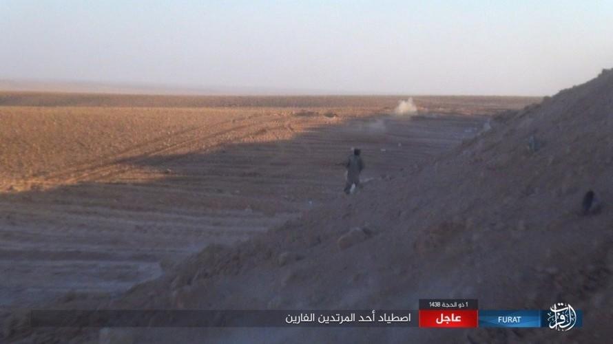 Anh: Phien quan IS phan cong du doi o mien nam Syria-Hinh-15