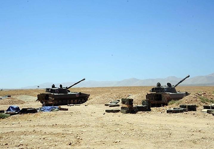 Anh: Quan doi Syria lai thang lon o Tay Qalamoun-Hinh-5