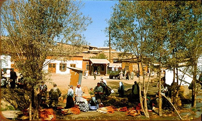 Binh di cuoc song thuong nhat o Uzbekistan nam 1956-Hinh-10