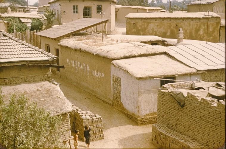 Binh di cuoc song thuong nhat o Uzbekistan nam 1956-Hinh-8