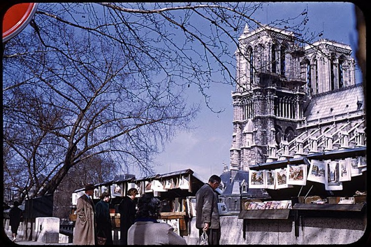 He mo cuoc song thuong nhat o Paris thap nien 1950-Hinh-3
