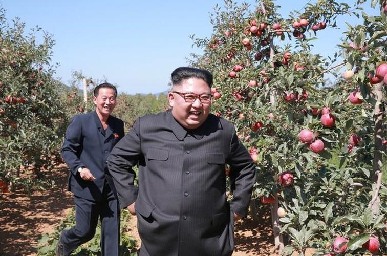 Lanh dao Kim Jong-un cuoi tuoi tham vuon tao triu qua-Hinh-3