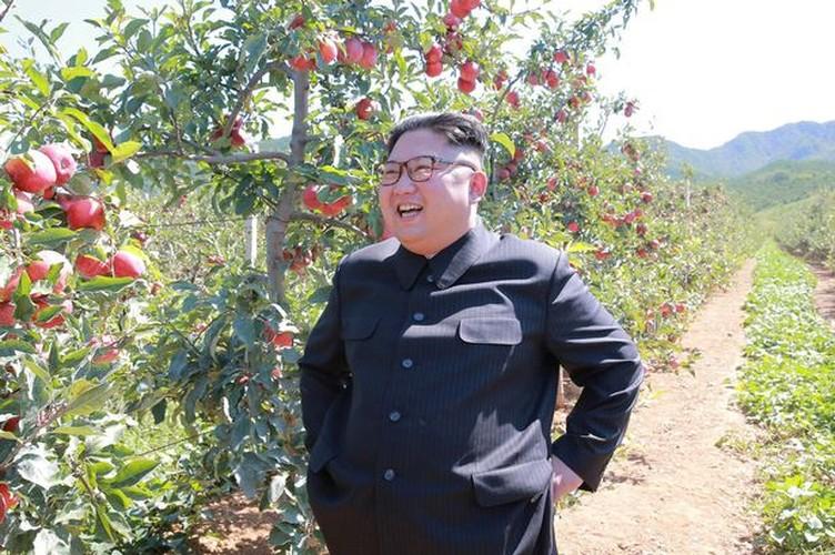 Lanh dao Kim Jong-un cuoi tuoi tham vuon tao triu qua-Hinh-4