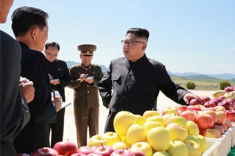 Lanh dao Kim Jong-un cuoi tuoi tham vuon tao triu qua-Hinh-6