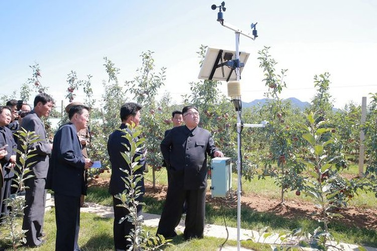 Lanh dao Kim Jong-un cuoi tuoi tham vuon tao triu qua-Hinh-7