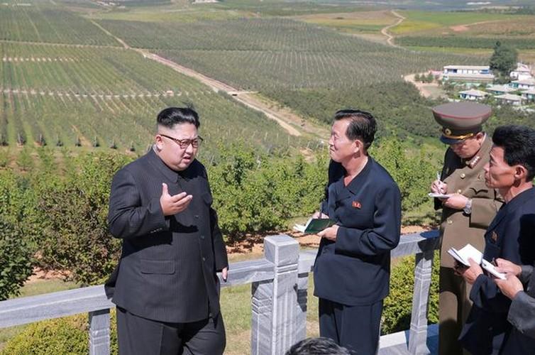 Lanh dao Kim Jong-un cuoi tuoi tham vuon tao triu qua-Hinh-8