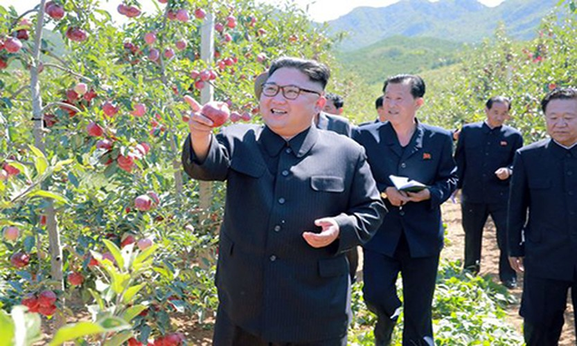 Lanh dao Kim Jong-un cuoi tuoi tham vuon tao triu qua