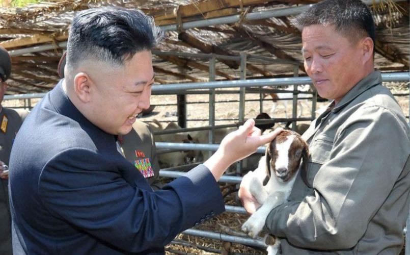 """Anh """"doc"""" ve nha lanh dao Trieu Tien Kim Jong-un (3)-Hinh-11"""