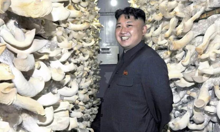 """Anh """"doc"""" ve nha lanh dao Trieu Tien Kim Jong-un (3)-Hinh-7"""
