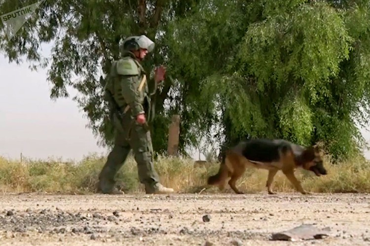Can canh cong binh Nga ra pha bom min o Deir Ezzor-Hinh-9