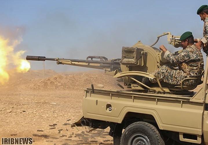 Anh: Iraq-Iran ram ro tap tran quan su chung-Hinh-11
