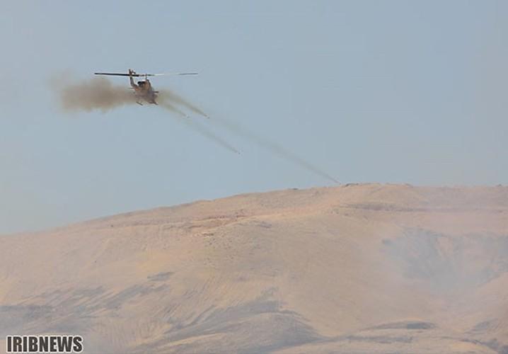 Anh: Iraq-Iran ram ro tap tran quan su chung-Hinh-7