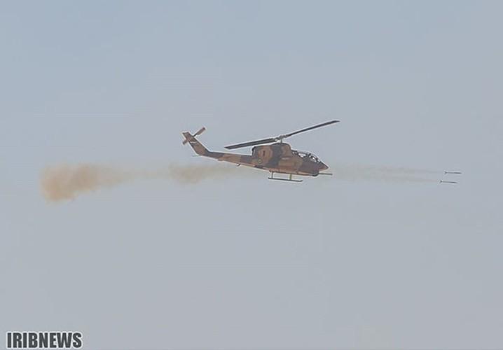 Anh: Iraq-Iran ram ro tap tran quan su chung-Hinh-9