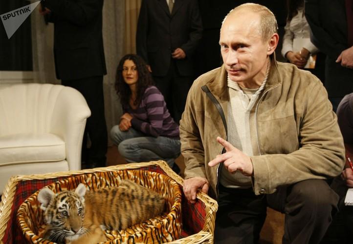 Chum anh Tong thong Putin va tinh yeu doi voi dong vat-Hinh-10