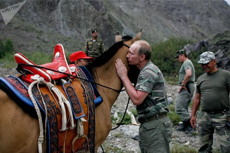 Chum anh Tong thong Putin va tinh yeu doi voi dong vat-Hinh-12