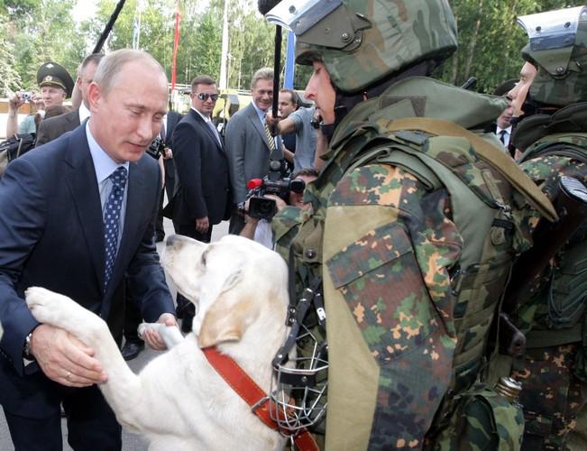 Chum anh Tong thong Putin va tinh yeu doi voi dong vat-Hinh-4