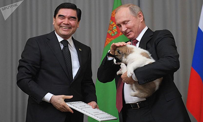 Chum anh Tong thong Putin va tinh yeu doi voi dong vat