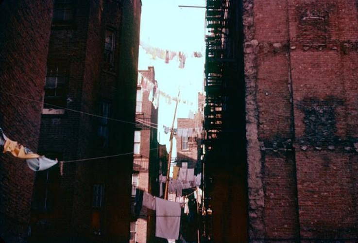 Muon mau cuoc song o New York cuoi thap nien 1950-Hinh-10