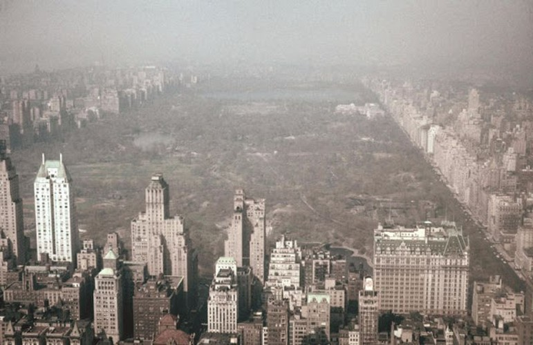 Muon mau cuoc song o New York cuoi thap nien 1950-Hinh-11