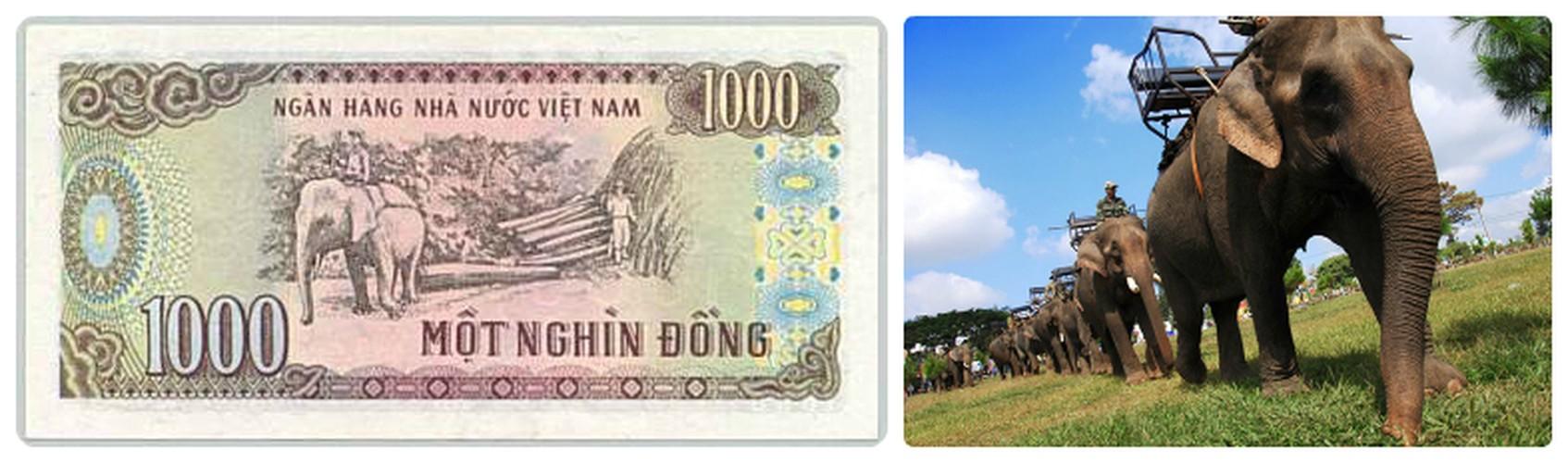Giai ma tat tat dia danh in tren tien Viet Nam-Hinh-3