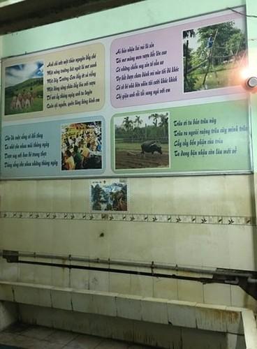 Dan mang soc voi bai tho trong toilet nam-Hinh-10