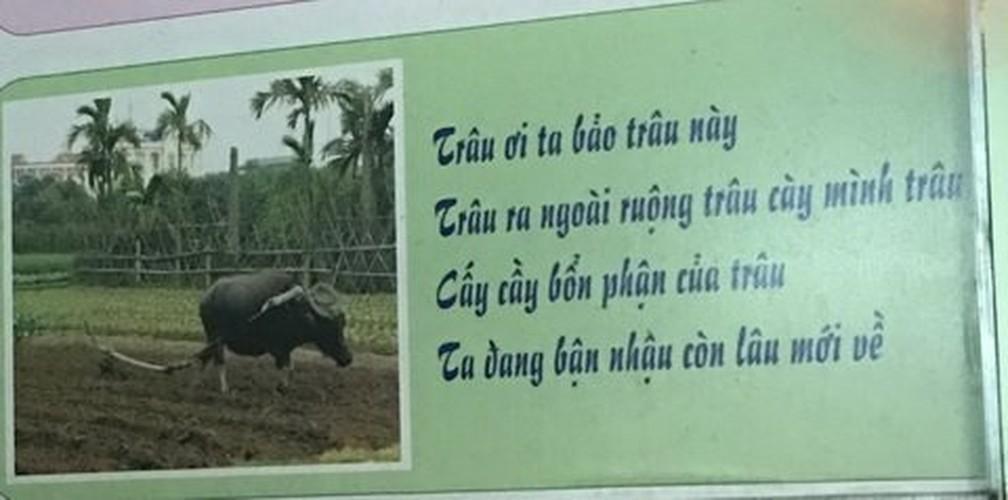 Dan mang soc voi bai tho trong toilet nam-Hinh-9