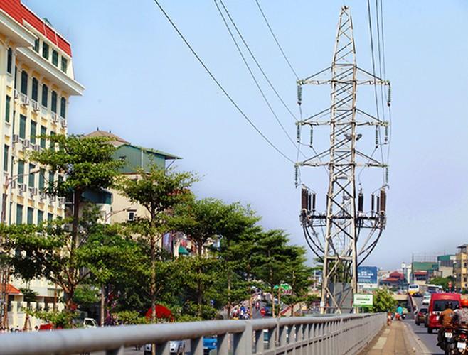 Anh Hang tram cay xanh trong duoi duong dien cao the o HN