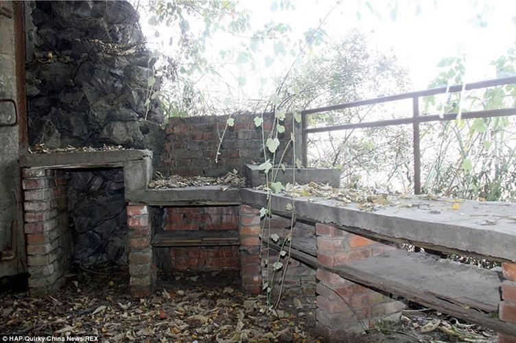 Nha may hat nhan trong hang nhan tao cua Trung Quoc-Hinh-10