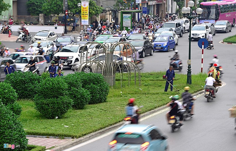 Muc kich cong nhan cat co moc um tum giua thu do-Hinh-6