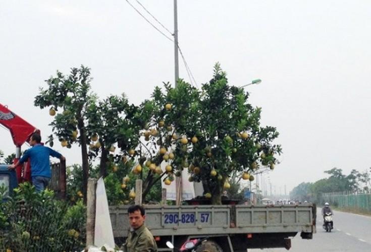 """Ky cong """"dap mat na"""" cho hang ngan qua buoi doi choi Tet-Hinh-11"""