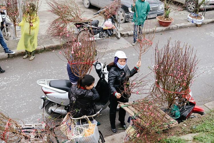 5 cho hoa noi tieng Ha Noi nen ghe tham trong dip Tet-Hinh-2