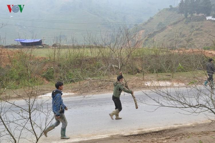 Dao rung Sa Pa ron rang xuong pho-Hinh-4