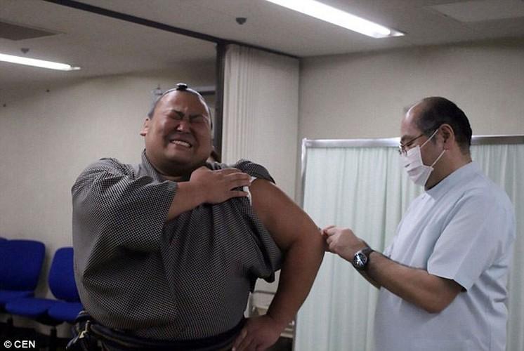 Vo si sumo Nhat Ban meu mao khi bi tiem-Hinh-4