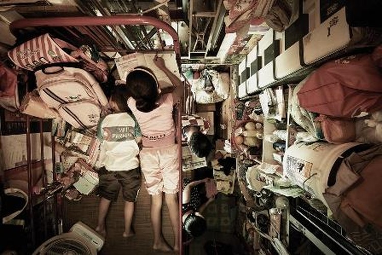 Chum anh ghe ron nha quan tai o khu o chuot Hong Kong-Hinh-9