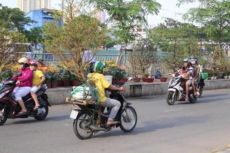 Diu hiu cho hoa Tet tren song lau doi nhat Sai Gon-Hinh-4