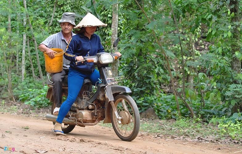 Theo chan tho san bo cap rung-Hinh-12