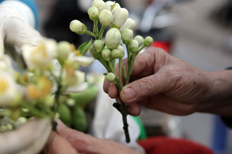 Anh: Mua hoa buoi diu dang xuong pho-Hinh-10