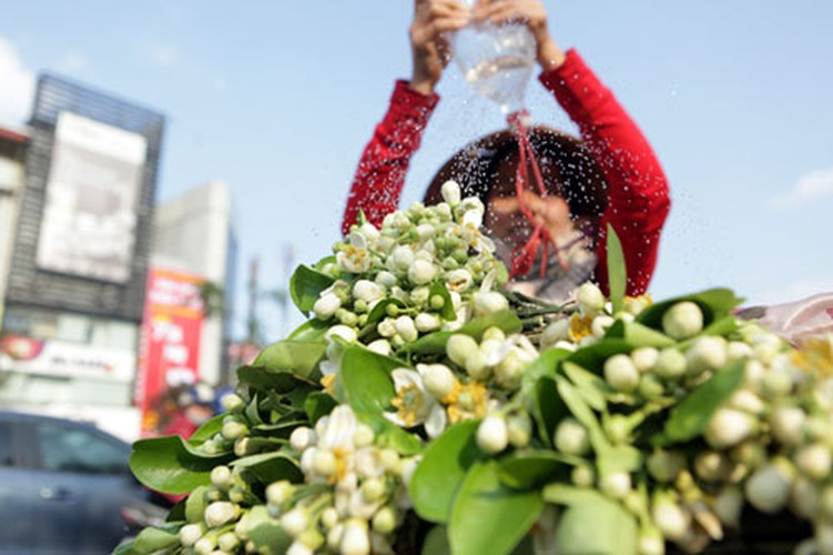 Anh: Mua hoa buoi diu dang xuong pho-Hinh-12