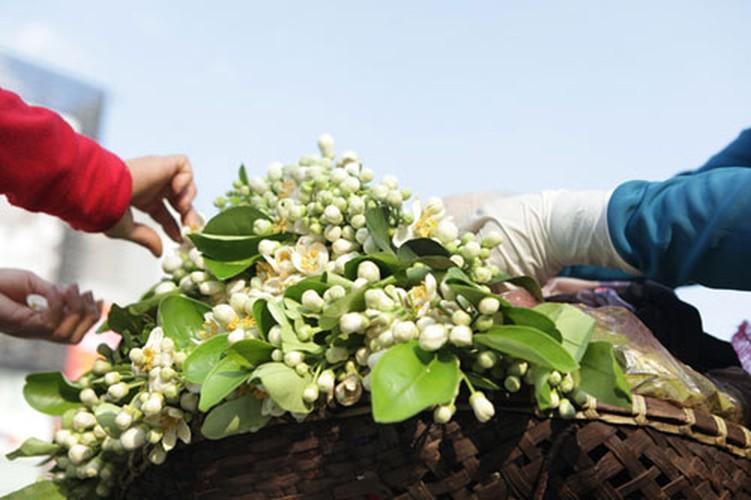 Anh: Mua hoa buoi diu dang xuong pho-Hinh-6