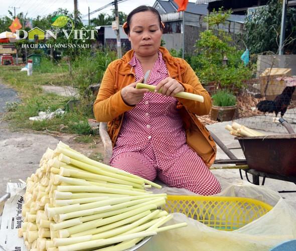 Gion ngon dua bon bon dac san Dat Mui-Hinh-3