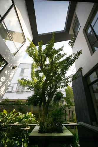 Dep ngo ngang biet thu 700 m2 tinh te o Ha Noi-Hinh-16