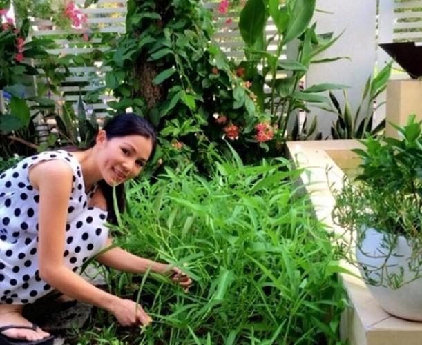 Muot mat vuon rau sach trong biet thu cua cac sao Viet-Hinh-7